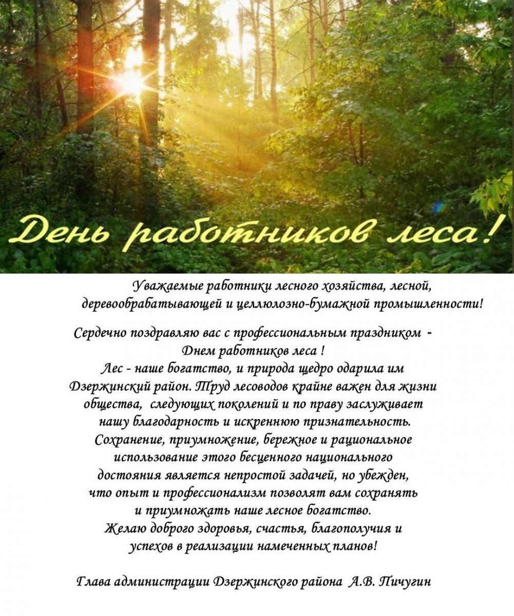 Поздравление с днем работника леса от главы администрации
